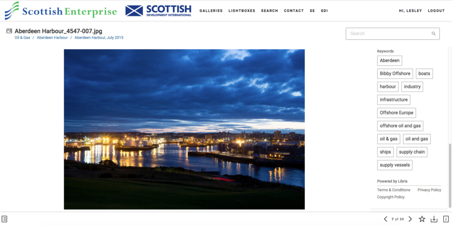 Scottish Enterprise website page